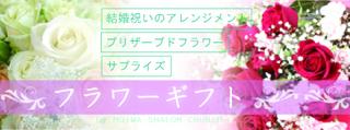 MSC FLOWER.jpg